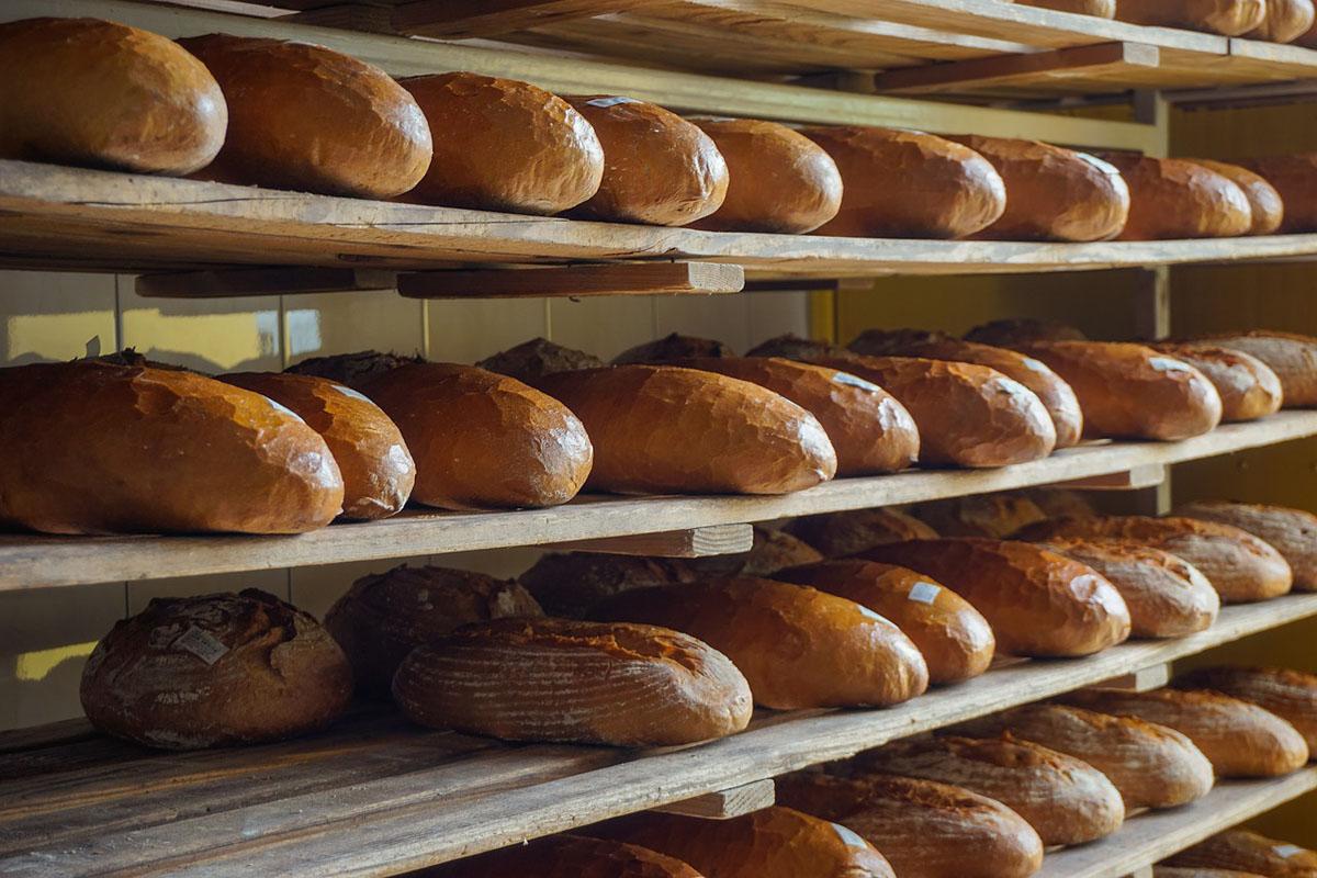 Mecklenburg-Vorpommern: Wie geht es dem Lila Bäcker?