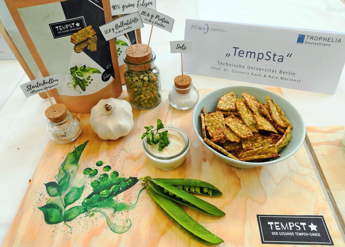 20190412-TEMPSTA-FEI